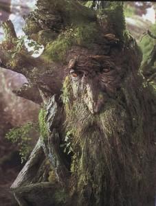 reprises des hostilités dans loudeac 2012 treebeard-the-ent-e1269783419659-227x300